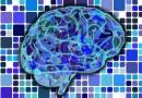 Harapan untuk Pasien Stroke: Obat Baru yang Mampu Menembus Penghalang Otak